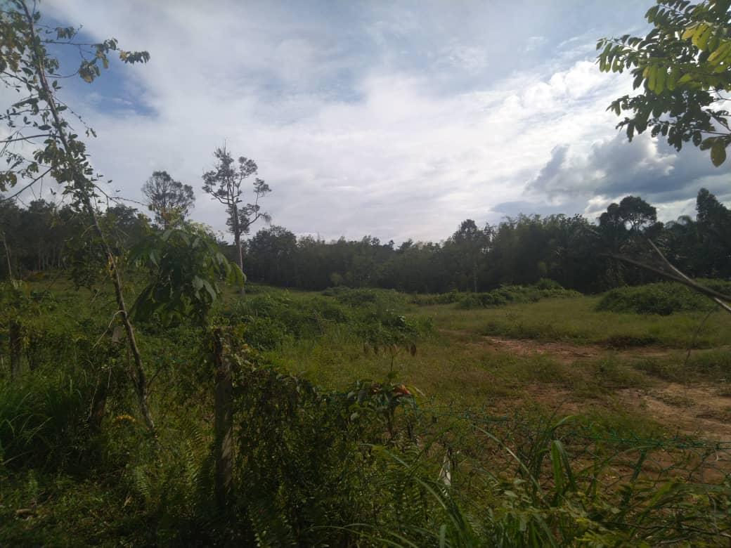 [SEBELAH PERUMAHAN] Tanah Pertanian di Ulu Yam Bharu untuk dijual.